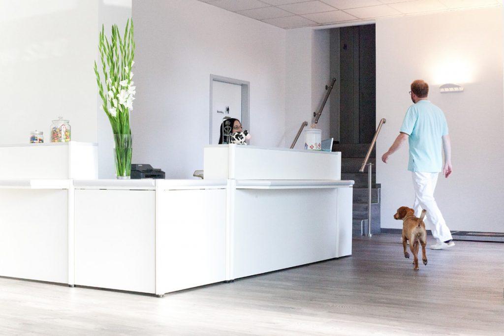 Tierarzt Dr. Christoph Szober